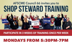 Steward Trainings